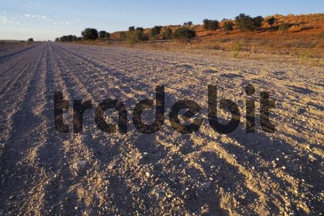 Product picture bad road gravel road washboard road in Namibia