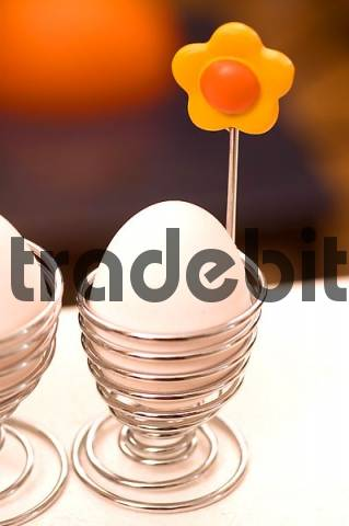 Product picture egg in a egg cup