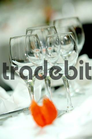 Product picture wine glasses on a festive laid table