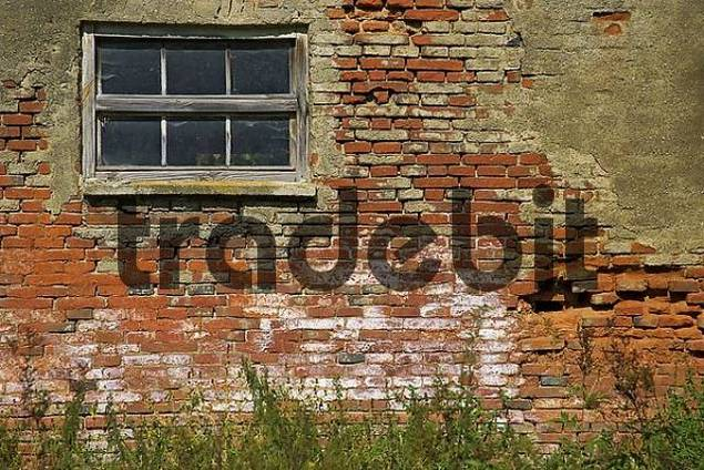Product picture Old brickwall near Dorfen Upper Bavaria Germany